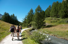 Walking path from Monal to Sainte Foy